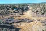 Spring Creek Ranch Sadorus Hill - Photo 17