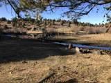 Spring Creek Ranch Sadorus Hill - Photo 21