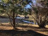 Spring Creek Ranch Sadorus Hill - Photo 11