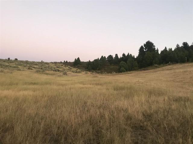 TBD Moose Hollow, Lava Hot Springs, ID 83246 (MLS #560822) :: The Perfect Home-Five Doors