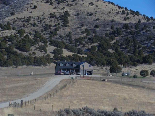1964 Deer Horn Circle, Bancroft, ID 83217 (MLS #561332) :: The Perfect Home