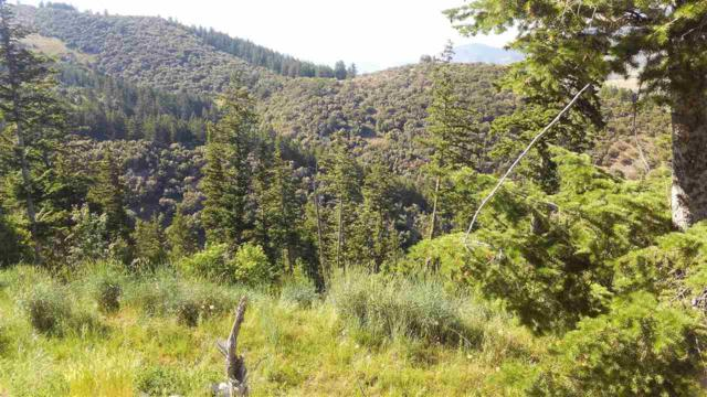 TBD Baldy Mountain Road, Lava Hot Springs, ID 83246 (MLS #561374) :: The Perfect Home-Five Doors