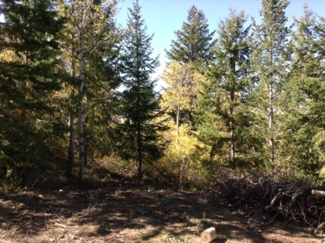 00 Wyoming Trail, Lava Hot Springs, ID 83246 (MLS #562145) :: The Perfect Home