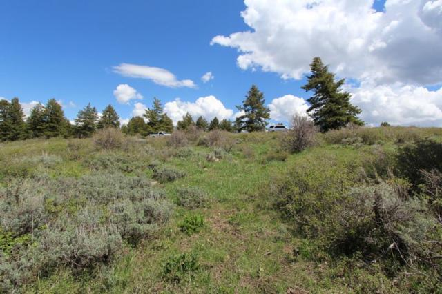 Lot 113 High Country Rd, Lava Hot Springs, ID 83246 (MLS #562482) :: The Perfect Home