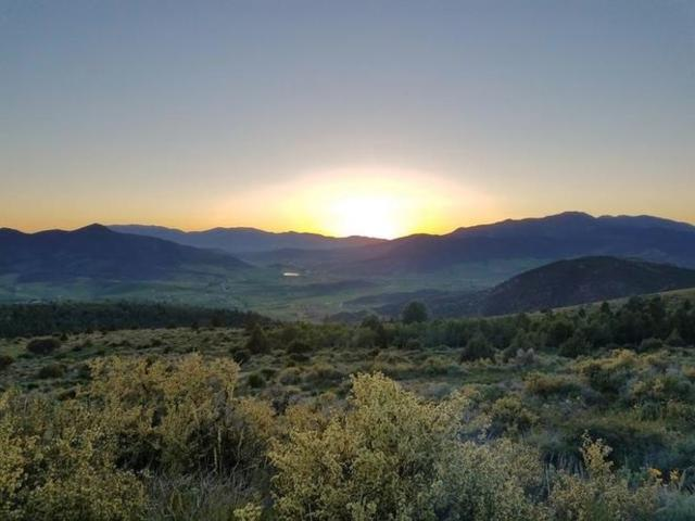 Lot 14 Selkirk, Lava Hot Springs, ID 83246 (MLS #562508) :: The Perfect Home
