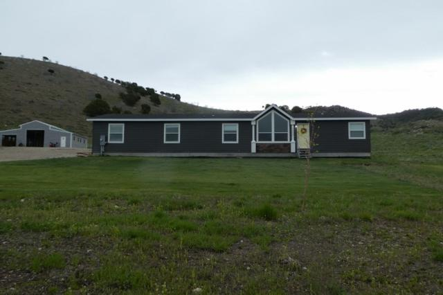 1960 Deer Horn Circle, Bancroft, ID 83217 (MLS #562533) :: The Group Real Estate