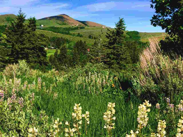 TBD N Panorama, Pocatello, ID 83201 (MLS #562812) :: The Perfect Home