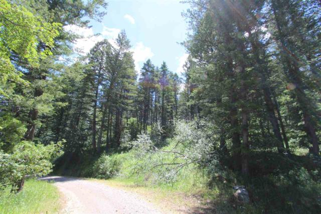 26B Deer Creek, Lava Hot Springs, ID 83246 (MLS #563155) :: The Group Real Estate