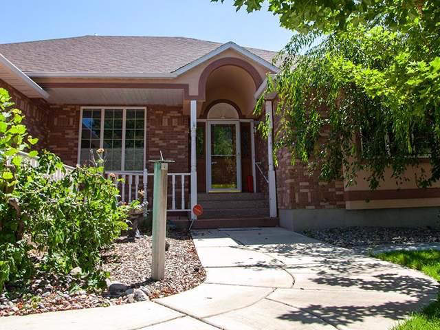 3225 Summit Drive, Pocatello, ID 83201 (MLS #563330) :: The Perfect Home
