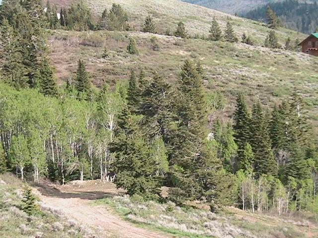 Lot 10 Wolverine, Firth, ID 83236 (MLS #563688) :: The Perfect Home
