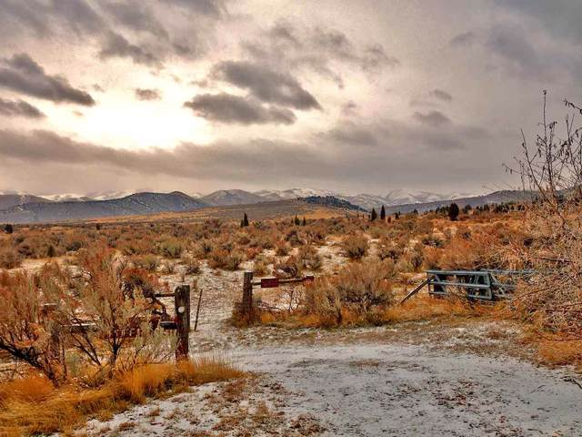Parcel 1 Neva, Pocatello, ID 83204 (MLS #564173) :: Silvercreek Realty Group