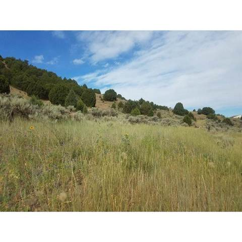 TBD W Buckskin Rd, Pocatello, ID 83201 (MLS #564487) :: The Perfect Home