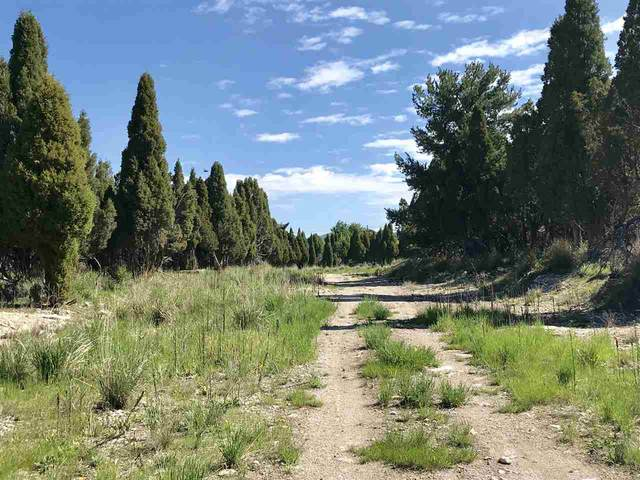 TBD Pioneer Drive, Soda Springs, ID 83276 (MLS #564966) :: The Group Real Estate