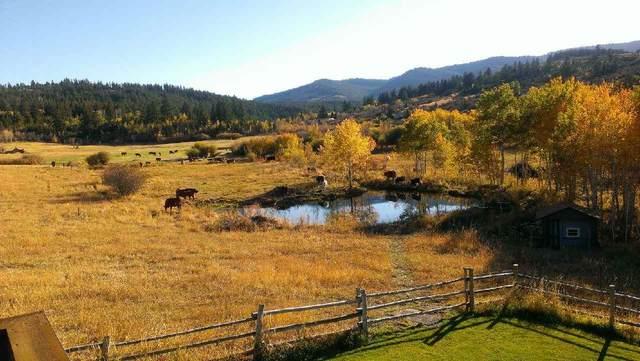 477 Bailey Creek Road, Soda Springs, ID 83276 (MLS #565521) :: Silvercreek Realty Group