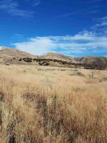 231 ACRES S 5TH, Pocatello, ID 83204 (MLS #565635) :: The Group Real Estate