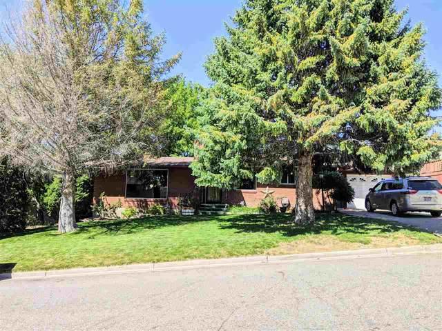 1580 Homer, Pocatello, ID 83201 (MLS #565724) :: Silvercreek Realty Group