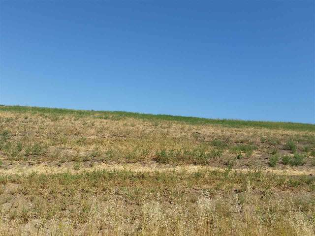 LOT 10 Eagle View Drive, Inkom, ID 83245 (MLS #566014) :: Silvercreek Realty Group