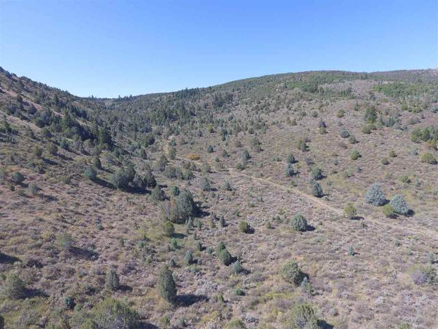 TBD Fish Creek, Lava Hot Springs, ID 83246 (MLS #566120) :: The Group Real Estate