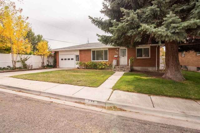 739 Wyldwood Lane, Pocatello, ID 83201 (MLS #566555) :: The Perfect Home
