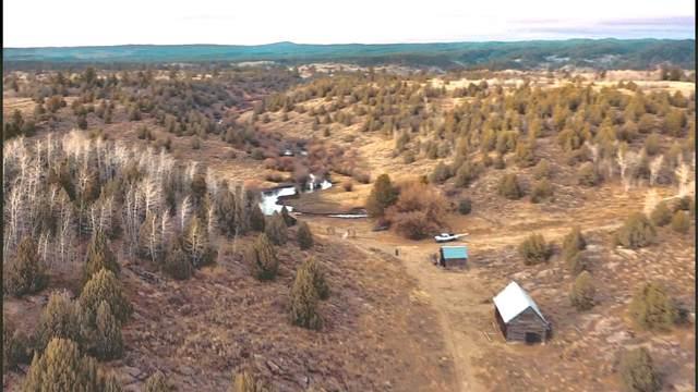 Spring Creek Ranch Sadorus Hill, Ashton, ID 83420 (MLS #566736) :: The Group Real Estate