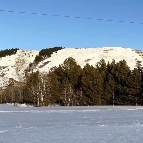 TBD N. BR Sulfer Canyon, Soda Springs, ID 83276 (MLS #567298) :: The Perfect Home