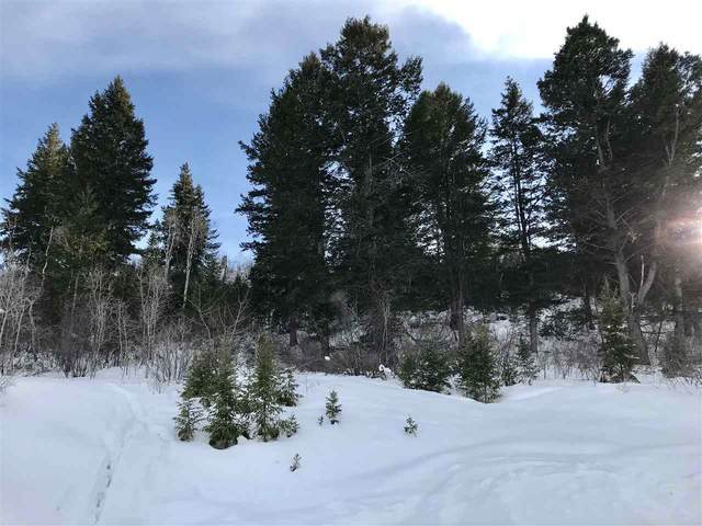 187 Caribou Rd., Soda Springs, ID 83276 (MLS #567611) :: The Perfect Home