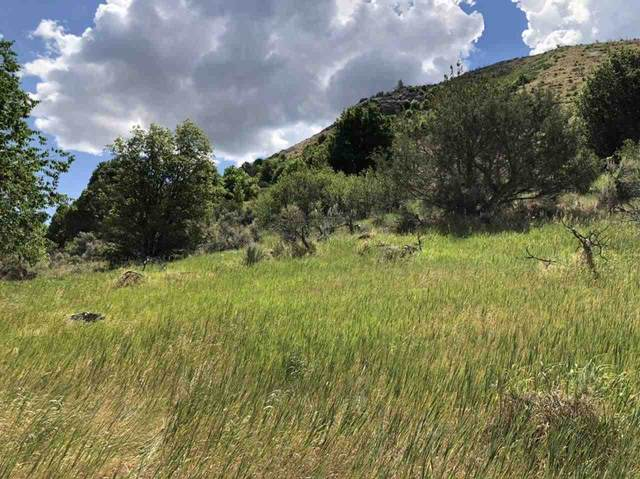 00 E Elm, Lava Hot Springs, ID 83246 (MLS #568325) :: The Perfect Home