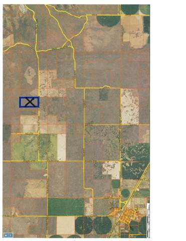 TBD Hatch Road, 136 Acres, Bancroft, ID 83276 (MLS #568840) :: The Perfect Home
