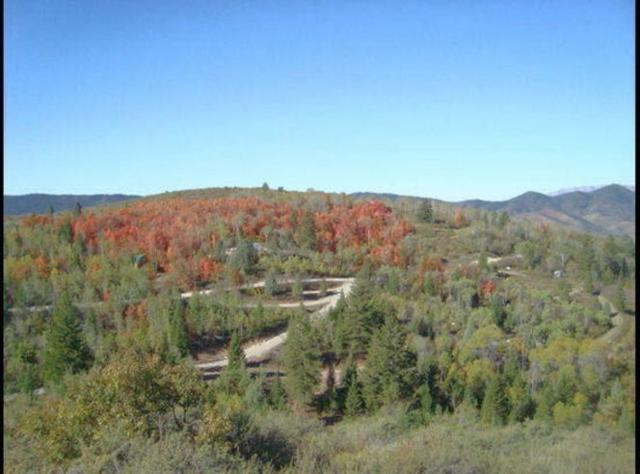 00 Monashee Circle, Lava Hot Springs, ID 83246 (MLS #559789) :: The Perfect Home