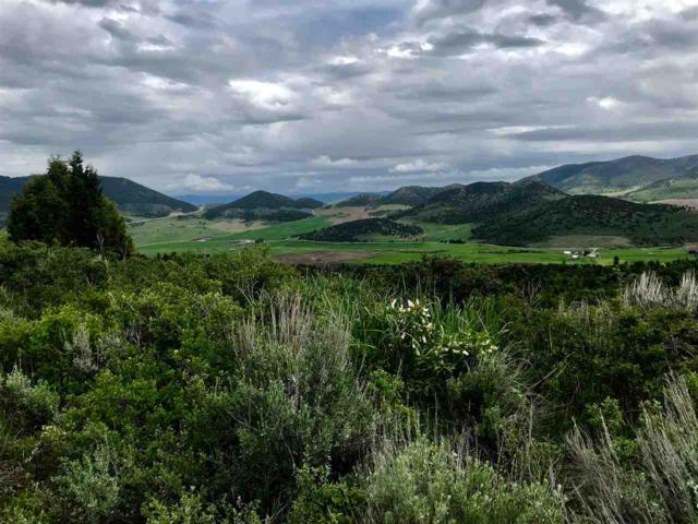 Lot 6 Selkirk Road, Lava Hot Springs, ID 83246 (MLS #562142) :: The Perfect Home