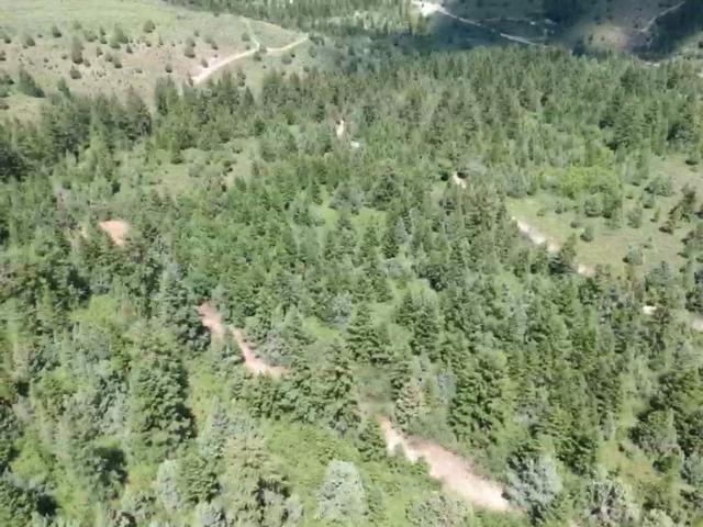 29 Deer Creek, Lava Hot Springs, ID 83246 (MLS #562877) :: The Group Real Estate