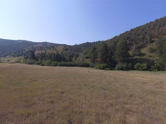TBD Fish Creek Ext, Lava Hot Springs, ID 83246 (MLS #566118) :: The Group Real Estate