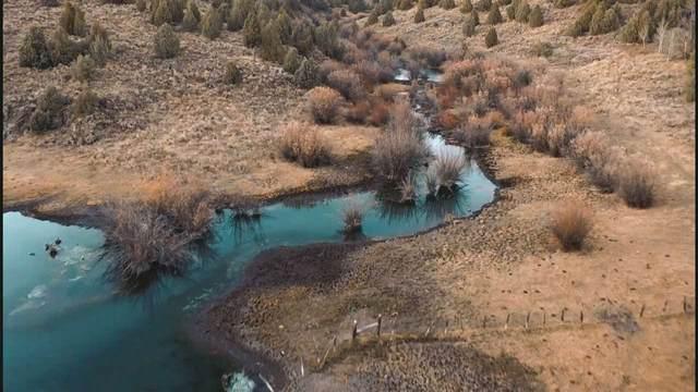 Spring Creek Ranch Sadorus Hill, Ashton, ID 83420 (MLS #566735) :: Silvercreek Realty Group
