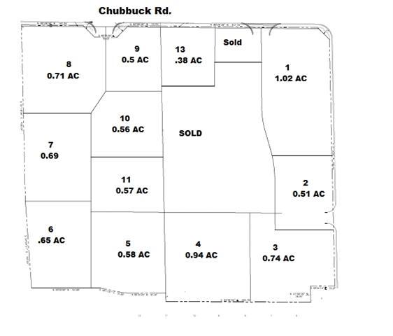 Lot 8 Chubbuck - Photo 1