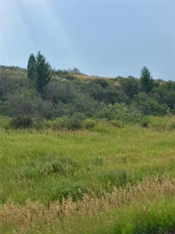 Lot 104 Bailey Creek Subdivision #1, Soda Springs, ID 83276 (MLS #559372) :: The Perfect Home-Five Doors