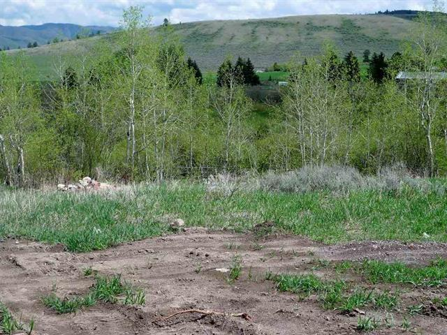 Lot 5 Bailey Creek Subdivision #1, Soda Springs, ID 83276 (MLS #562380) :: The Perfect Home
