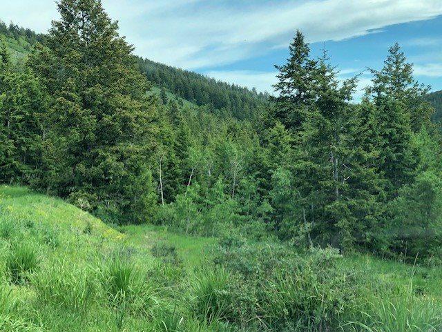 Lot 111 Big Bear, Lava Hot Springs, ID 83246 (MLS #562840) :: The Perfect Home