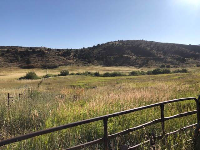 00 Woodward Drive, Lava Hot Springs, ID 83246 (MLS #563401) :: The Group Real Estate