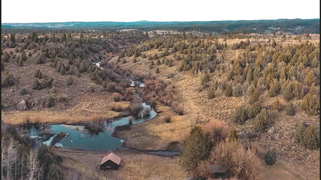Spring Creek Ranch Sadorus Hill - Photo 1