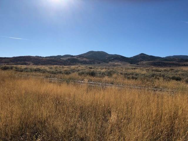 10687 Ivory Tooth Tri, Malad City, ID 83252 (MLS #566648) :: The Perfect Home