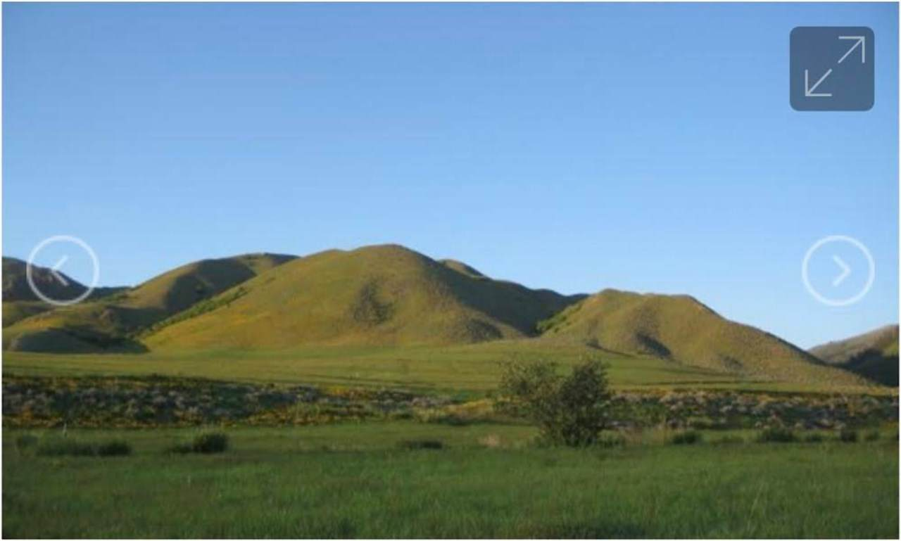6555 Country Estates Ln - Photo 1