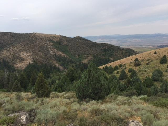 Lot 84 Deer Haven, Lava Hot Springs, ID 83246 (MLS #560644) :: The Perfect Home