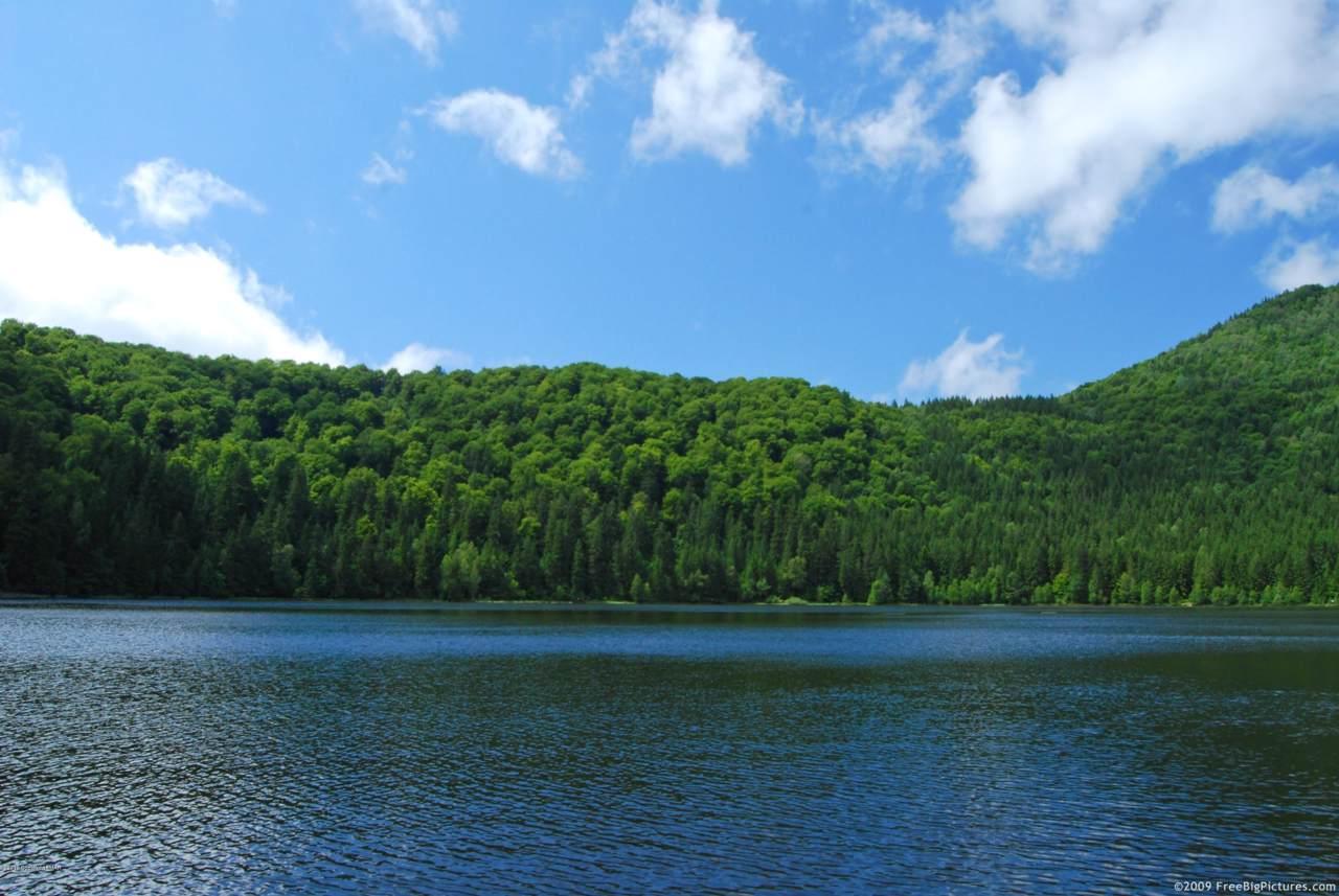 Lake Newfoundland - Photo 1