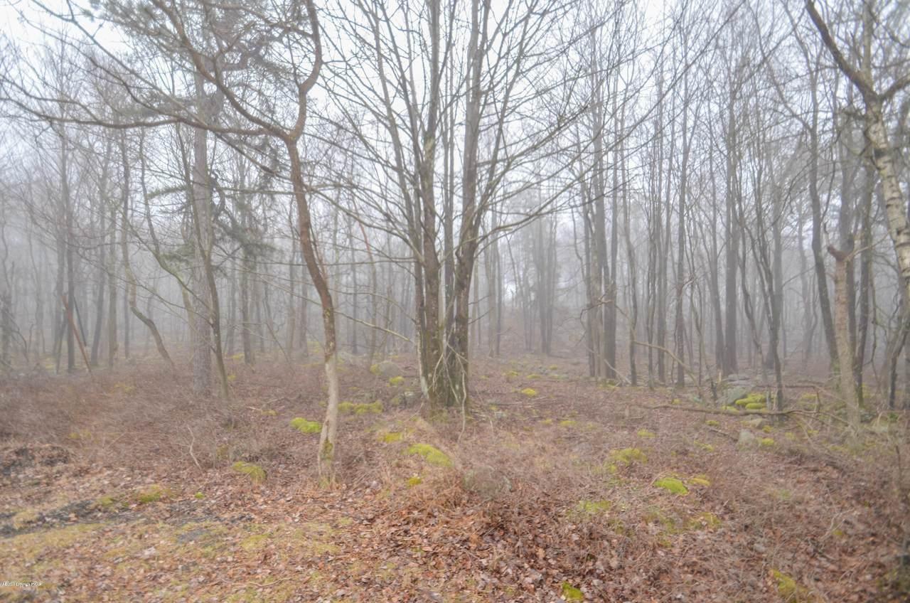57 Deer Run - Photo 1