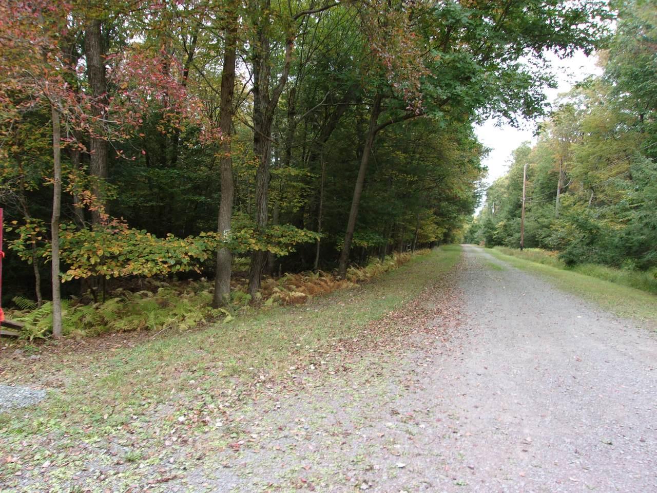 White Pine/Driftwood Road Rpad - Photo 1