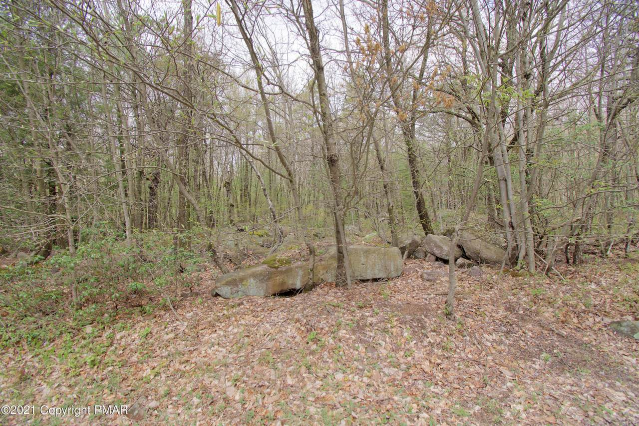 Lot23 Sycamore Dr - Photo 1