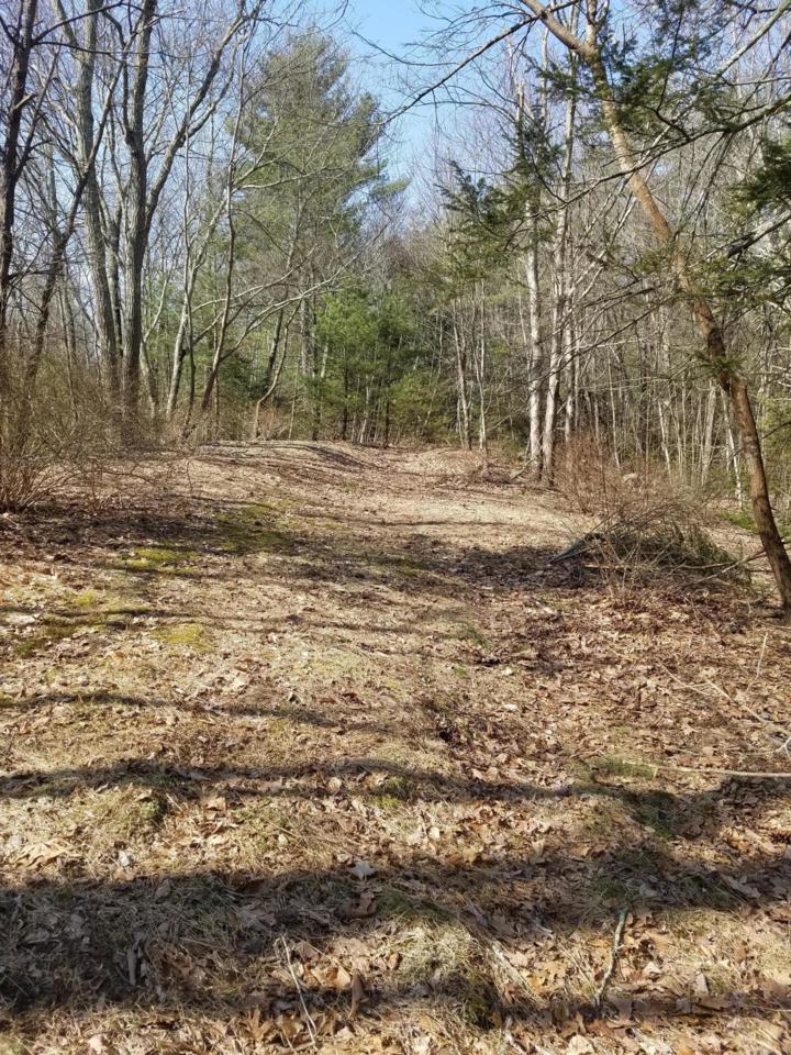 1042 Bartonsville Woods Rd - Photo 1