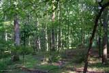 2.68 Acres Lot 3 On Robin Lane - Photo 5