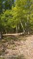 Lot 394 Hummingbird Trail - Photo 2