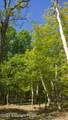 Lot 394 Hummingbird Trail - Photo 3
